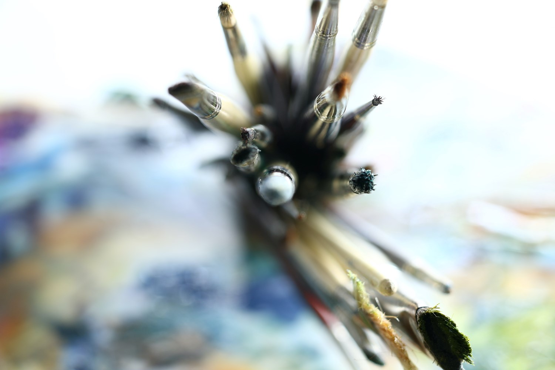 Mastering Brush Control and Brushes: Every Brush, Every Stroke Using Acrylic